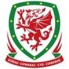 Wales Dětské 2021